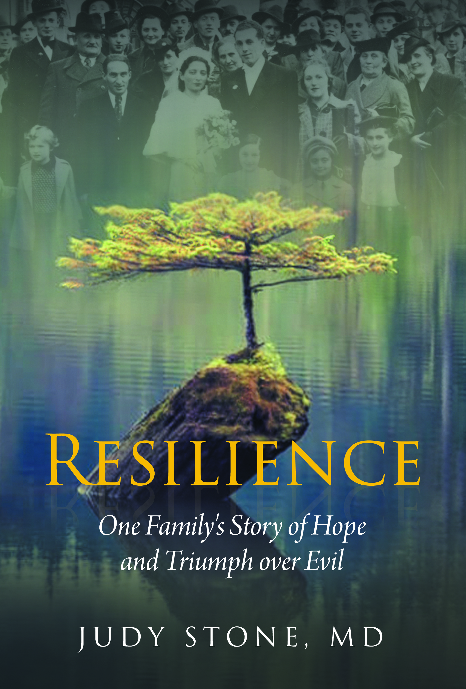 #38-3-Resilience Front Cover Print
